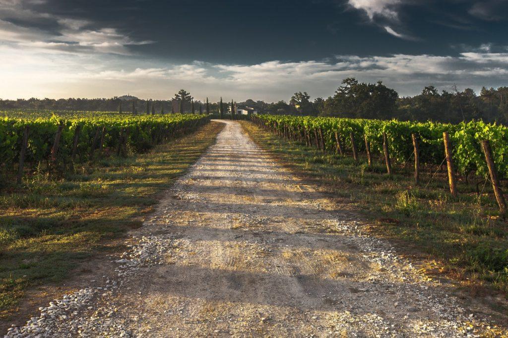 route vin